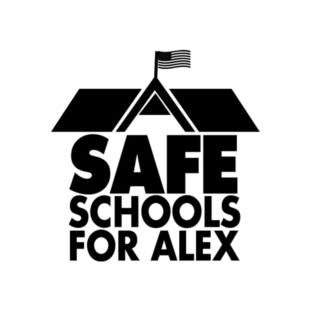 Max Schachter, Safe Schools for Alex